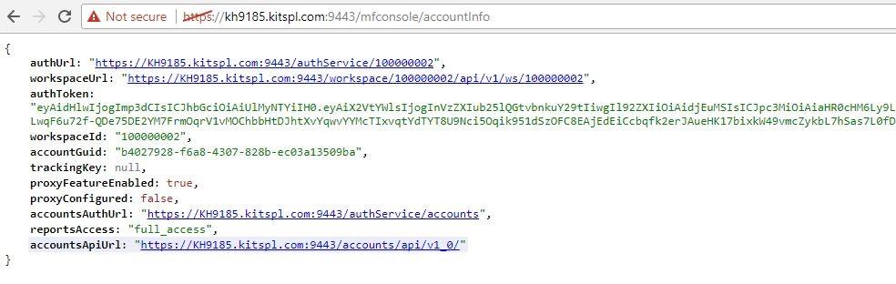 Screenshot showing JSON response for /accountinfo